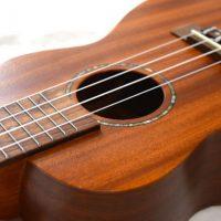 ウクレレ リュート クラシックギター 池袋 蕨川口 東京 教室