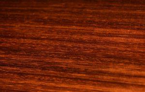 インディアンローズウッド レッスン 音楽教室 リュート クラシックギター ウクレレ 池袋 蕨 川口 東京 埼玉