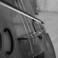 オンライン 通奏低音、リュートソング、アンサンブル、古楽、音楽教室 リュート クラシックギター ウクレレ 池袋 蕨 川口 東京 埼玉 レッスン